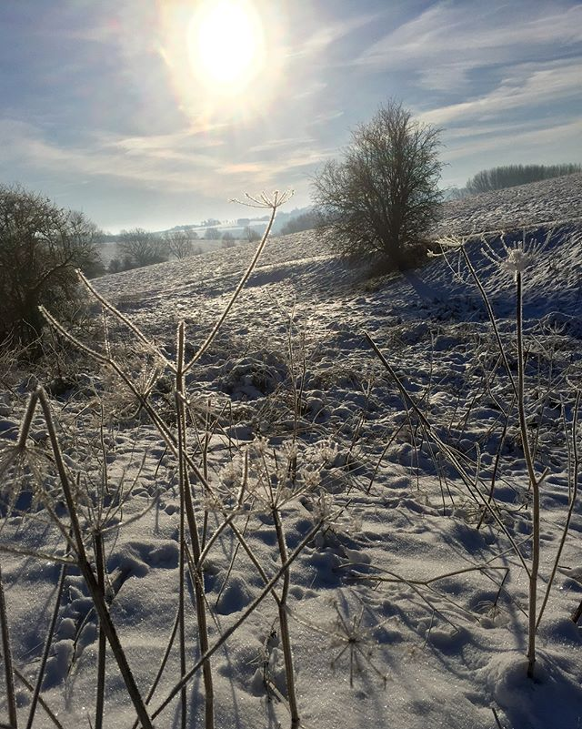 Proper winter.....