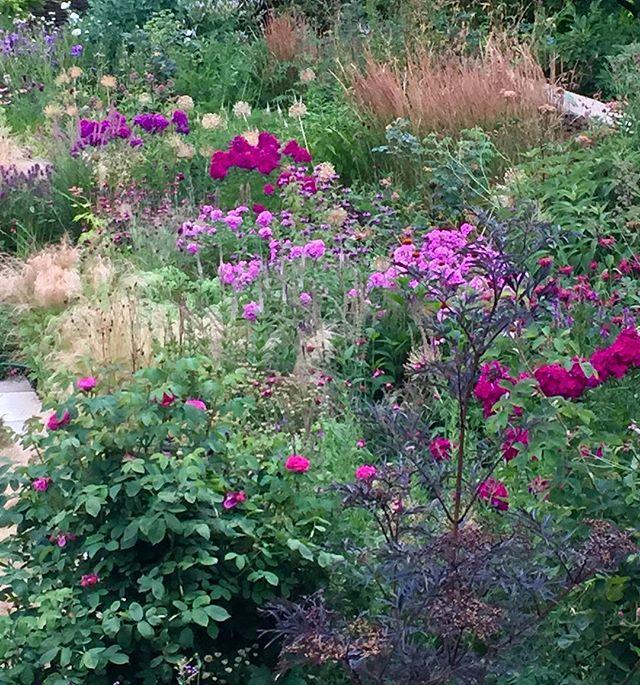 Goodnight garden. May you awaken to lashings of rain....